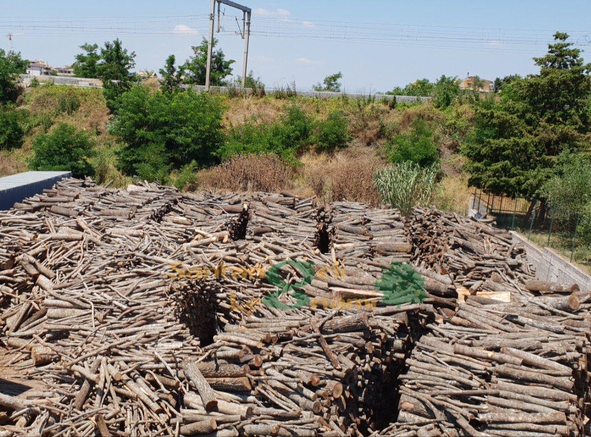 fornitura legname roma